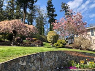 Photo 28: 3880 Mildred St in Saanich: SW Strawberry Vale House for sale (Saanich West)  : MLS®# 844822