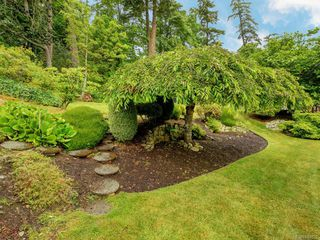 Photo 20: 3880 Mildred St in Saanich: SW Strawberry Vale House for sale (Saanich West)  : MLS®# 844822