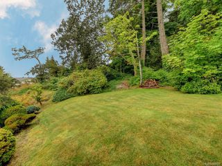 Photo 23: 3880 Mildred St in Saanich: SW Strawberry Vale House for sale (Saanich West)  : MLS®# 844822