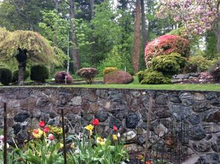 Photo 27: 3880 Mildred St in Saanich: SW Strawberry Vale House for sale (Saanich West)  : MLS®# 844822