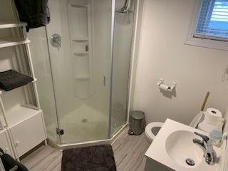 Photo 28: 9838 90 Avenue in Edmonton: Zone 15 House for sale : MLS®# E4220066