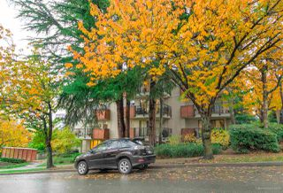 "Photo 21: 413 2142 CAROLINA Street in Vancouver: Mount Pleasant VE Condo for sale in ""WOOD DALE"" (Vancouver East)  : MLS®# R2523020"