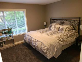 Photo 20: 34747 MILLSTONE Way in Abbotsford: Abbotsford East House for sale : MLS®# R2528756