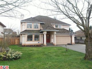 """Photo 1: 21796 46TH Avenue in Langley: Murrayville House for sale in """"Upper Murrayville"""" : MLS®# F1204533"""