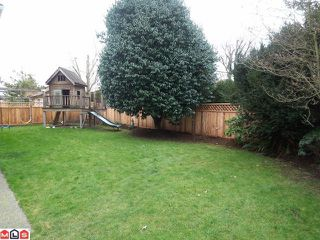 """Photo 8: 21796 46TH Avenue in Langley: Murrayville House for sale in """"Upper Murrayville"""" : MLS®# F1204533"""