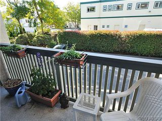 Photo 16: 3006 Scott St in VICTORIA: Vi Oaklands Row/Townhouse for sale (Victoria)  : MLS®# 620524