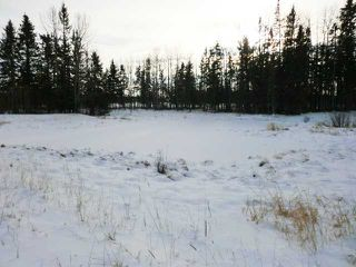 Photo 17: 32460 Range Road 5.0  Sundre, AB  T0M 1X0 in SUNDRE: Rural Mountain View County Single Wide for sale : MLS®# C3551589