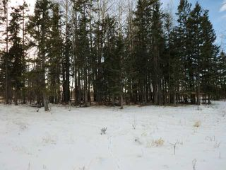 Photo 20: 32460 Range Road 5.0  Sundre, AB  T0M 1X0 in SUNDRE: Rural Mountain View County Single Wide for sale : MLS®# C3551589