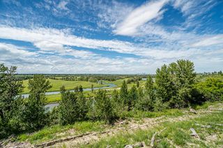 Photo 48: 206 MT ALBERTA Place SE in Calgary: McKenzie Lake Detached for sale : MLS®# A1014094
