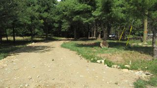 Photo 16: 7782 McGills Island Road in Middle Ohio: 407-Shelburne County Vacant Land for sale (South Shore)  : MLS®# 202016488