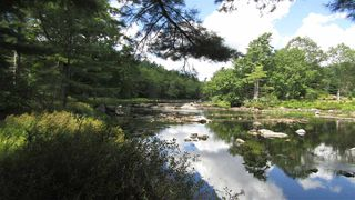 Photo 2: 7782 McGills Island Road in Middle Ohio: 407-Shelburne County Vacant Land for sale (South Shore)  : MLS®# 202016488