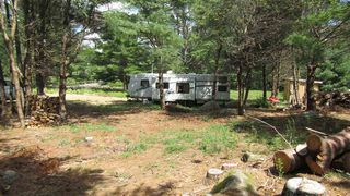 Photo 15: 7782 McGills Island Road in Middle Ohio: 407-Shelburne County Vacant Land for sale (South Shore)  : MLS®# 202016488