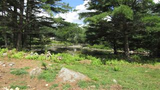 Photo 7: 7782 McGills Island Road in Middle Ohio: 407-Shelburne County Vacant Land for sale (South Shore)  : MLS®# 202016488