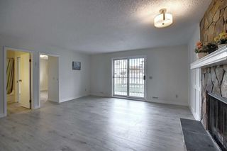 Photo 28: 191 Bernard Drive NW in Calgary: Beddington Heights Detached for sale : MLS®# A1042996