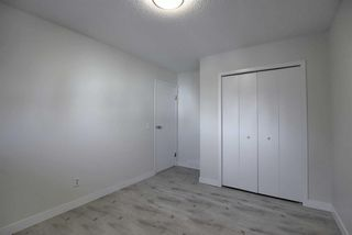 Photo 22: 191 Bernard Drive NW in Calgary: Beddington Heights Detached for sale : MLS®# A1042996