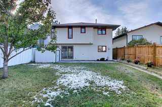 Photo 42: 191 Bernard Drive NW in Calgary: Beddington Heights Detached for sale : MLS®# A1042996