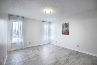 Photo 14: 191 Bernard Drive NW in Calgary: Beddington Heights Detached for sale : MLS®# A1042996