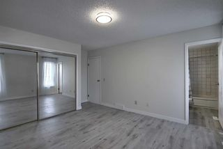 Photo 16: 191 Bernard Drive NW in Calgary: Beddington Heights Detached for sale : MLS®# A1042996