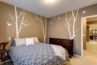 Photo 32: 219 Springbluff Heights SW in Calgary: Springbank Hill Detached for sale : MLS®# A1047010