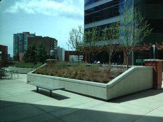 Photo 19: 706 220 12 Avenue SE in CALGARY: Victoria Park Condo for sale (Calgary)  : MLS®# C3567835