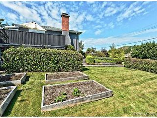 Photo 20: 3338 Wordsworth St in VICTORIA: SE Cedar Hill House for sale (Saanich East)  : MLS®# 640502