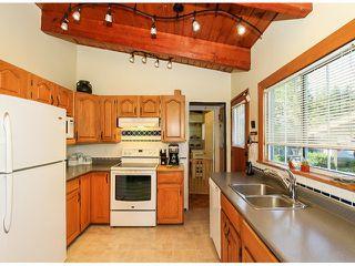 Photo 15: 10549 RIVER Road in Delta: Nordel House for sale (N. Delta)  : MLS®# F1419662