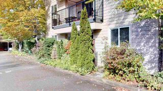 "Photo 17: A102 40100 WILLOW Crescent in Squamish: Garibaldi Estates Condo for sale in ""Diamondhead Place"" : MLS®# R2408654"