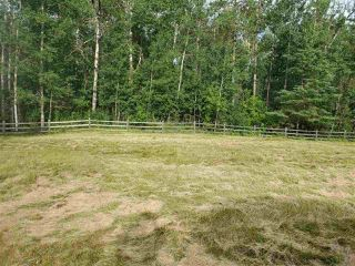 Photo 7: 51109 RGE RD 261 Road: Rural Parkland County Rural Land/Vacant Lot for sale : MLS®# E4210417