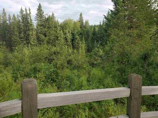 Photo 12: 51109 RGE RD 261 Road: Rural Parkland County Rural Land/Vacant Lot for sale : MLS®# E4210417