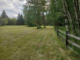 Photo 6: 51109 RGE RD 261 Road: Rural Parkland County Rural Land/Vacant Lot for sale : MLS®# E4210417