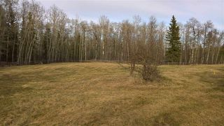 Photo 9: 51109 RGE RD 261 Road: Rural Parkland County Rural Land/Vacant Lot for sale : MLS®# E4210417