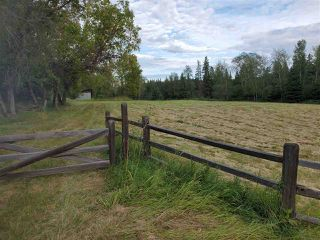 Photo 21: 51109 RGE RD 261 Road: Rural Parkland County Rural Land/Vacant Lot for sale : MLS®# E4210417