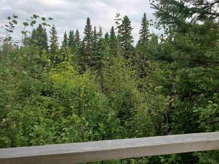 Photo 14: 51109 RGE RD 261 Road: Rural Parkland County Rural Land/Vacant Lot for sale : MLS®# E4210417