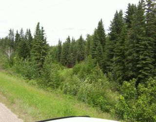 Photo 18: 51109 RGE RD 261 Road: Rural Parkland County Rural Land/Vacant Lot for sale : MLS®# E4210417