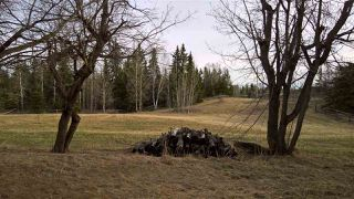 Photo 8: 51109 RGE RD 261 Road: Rural Parkland County Rural Land/Vacant Lot for sale : MLS®# E4210417