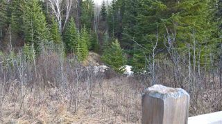 Photo 15: 51109 RGE RD 261 Road: Rural Parkland County Rural Land/Vacant Lot for sale : MLS®# E4210417