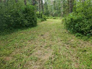 Photo 5: 51109 RGE RD 261 Road: Rural Parkland County Rural Land/Vacant Lot for sale : MLS®# E4210417