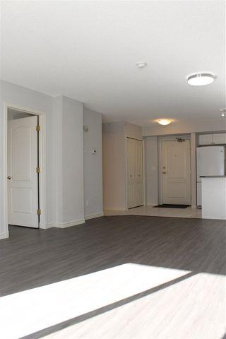 Photo 13: 502 10909 103 Avenue in Edmonton: Zone 12 Condo for sale : MLS®# E4212465