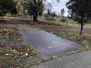 """Photo 1: 10654 WHALLEY Boulevard in Surrey: Bear Creek Green Timbers Land for sale in """"SURREY CENTRAL"""" : MLS®# R2506700"""