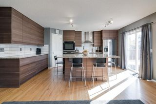 Photo 3: 19 Chapman Close SE in Calgary: Chaparral Detached for sale : MLS®# A1053108
