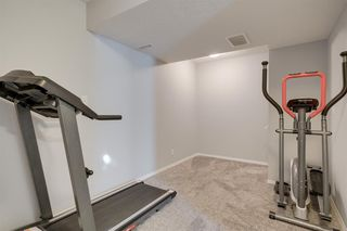 Photo 28: 19 Chapman Close SE in Calgary: Chaparral Detached for sale : MLS®# A1053108