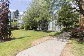 Photo 18: 202 3065 PRIMROSE LANE in Coquitlam: North Coquitlam Condo for sale : MLS®# R2072047
