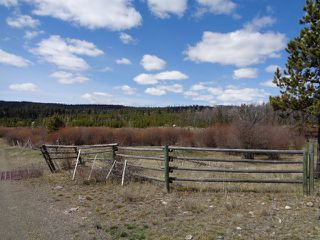 Photo 25: LOT 1 TUNKWA LAKE ROAD: LOGAN LAKE Land Only for sale (SOUTH WEST)  : MLS®# 139085
