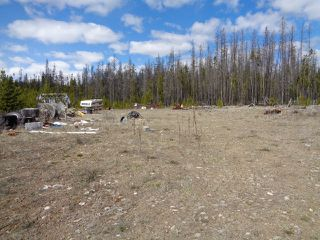 Photo 11: LOT 1 TUNKWA LAKE ROAD: LOGAN LAKE Land Only for sale (SOUTH WEST)  : MLS®# 139085