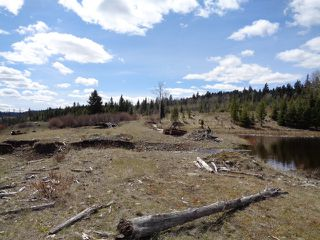 Photo 18: LOT 1 TUNKWA LAKE ROAD: LOGAN LAKE Land Only for sale (SOUTH WEST)  : MLS®# 139085