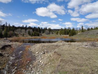 Photo 23: LOT 1 TUNKWA LAKE ROAD: LOGAN LAKE Land Only for sale (SOUTH WEST)  : MLS®# 139085
