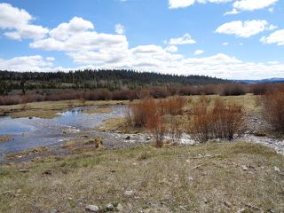 Photo 20: LOT 1 TUNKWA LAKE ROAD: LOGAN LAKE Land Only for sale (SOUTH WEST)  : MLS®# 139085