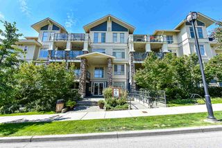 """Photo 1: 406 290 FRANCIS Way in New Westminster: Fraserview NW Condo for sale in """"The Grove"""" : MLS®# R2393246"""