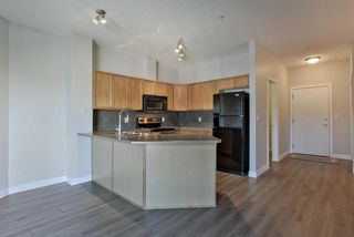 Photo 14: 410 226 MACEWAN Road in Edmonton: Zone 55 Condo for sale : MLS®# E4185043