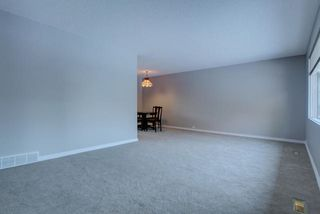 Photo 5: 4 GREYSTONE Place: St. Albert House for sale : MLS®# E4196065